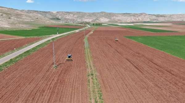Patates üretiminde ilk sıralarda olan Sivasta tohumlar toprakla buluştu
