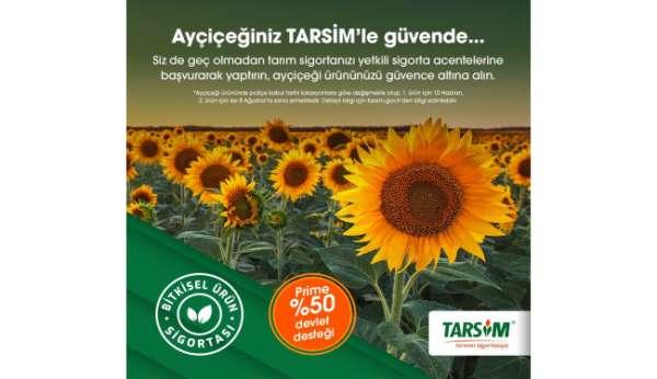 TARSİM: Ayçiçeği ürününüz güvende