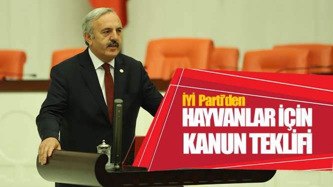 İYİ Parti'den Hayvan Hakları İçin Kanun Teklifi!