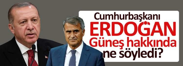 Erdoğan, Güneş hakkında ne söyledi*