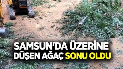 Samsun'da üzerine düşen ağaç sonu oldu