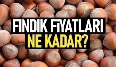 Samsun'da fındık fiyatları ne kadar ? 10 Nisan Cumartesi fındık fiyatları