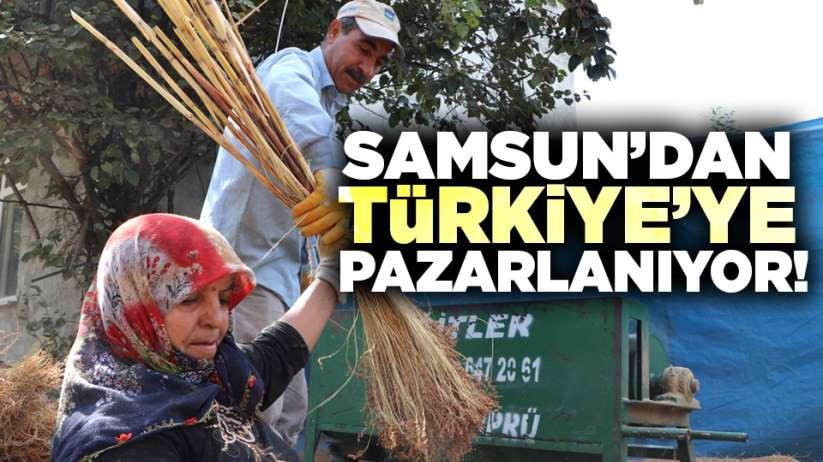 Samsun'dan Türkiye'ye pazarlanıyor!