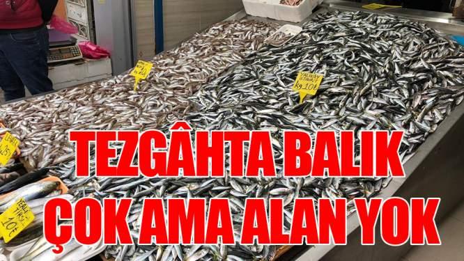 Tezgâhta balık çok ama alan yok