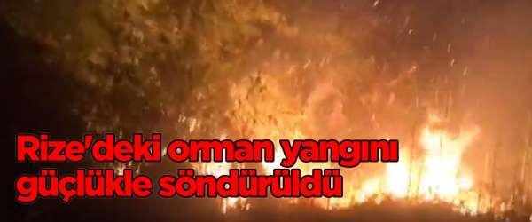 Rize'deki orman yangını güçlükle söndürüldü