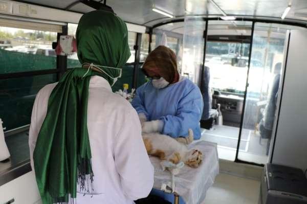 Gezici Kısırlaştırma Aracı 256 hayvana hizmet verdi