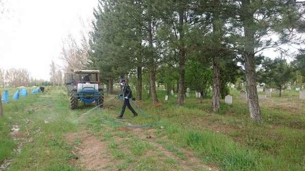 Aslanapa'da mezarlık temizleme ve ilaçlama çalışmaları