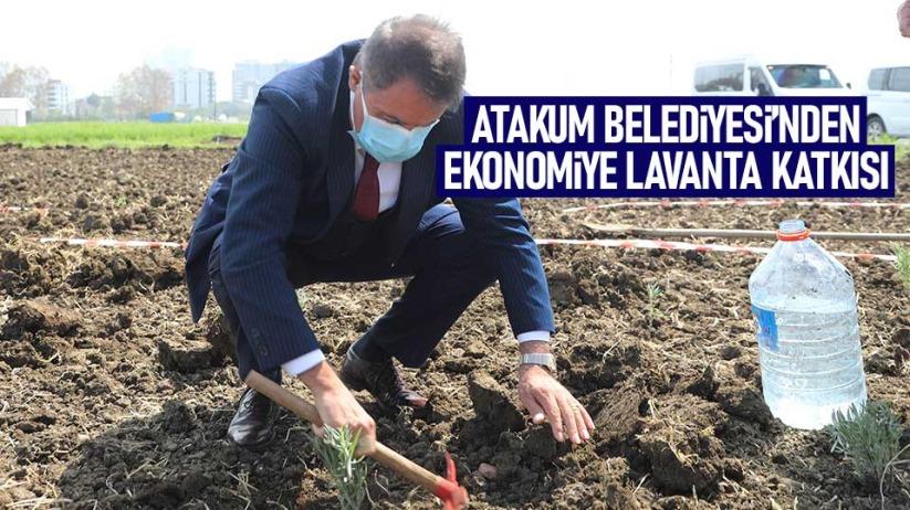 Atakum Belediyesinden ekonomiye lavanta katkısı
