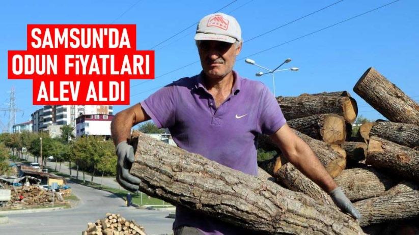 Samsunda büyük fabrikalar odunu ateşliyor
