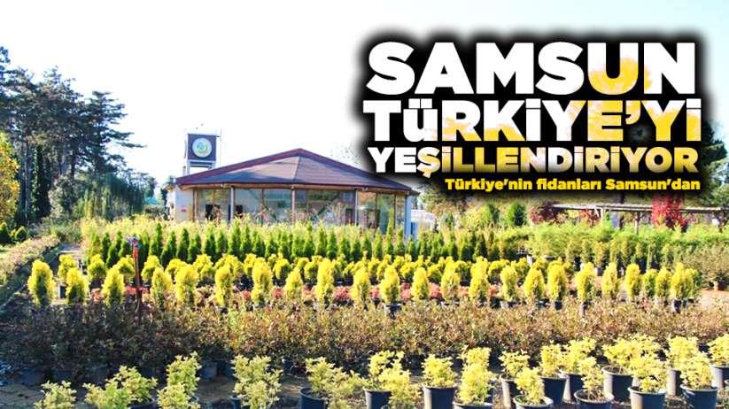 Samsun Türkiye'yi yeşillendiriyor