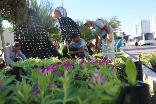 Haliliye'de parklara çiçek ekimi yapıldı