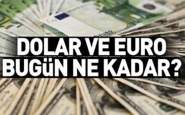 Dolar ve euro bugün ne kadar? 9 Ağustos 2020