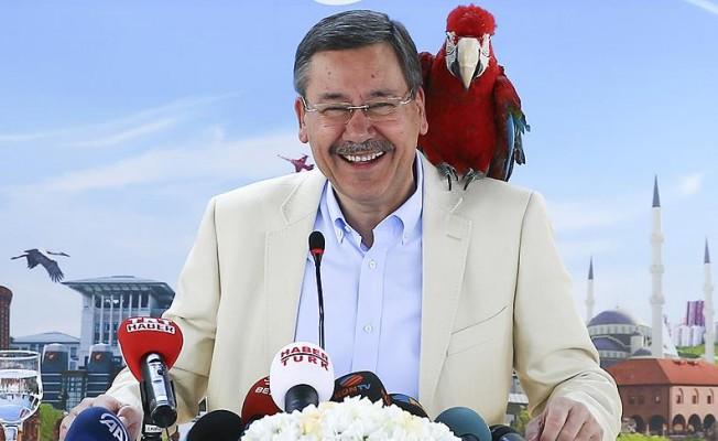 7. Büyük Ankara Festivali