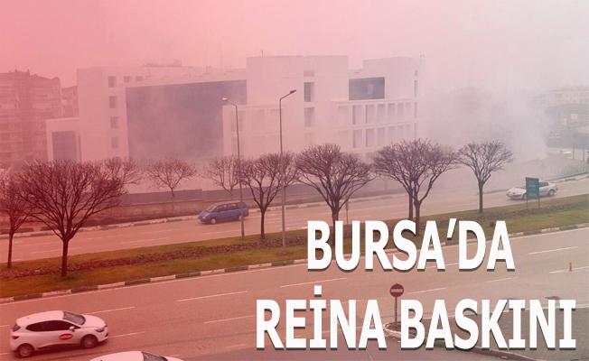 BURSA'DA REİNA GÖZALTILARI