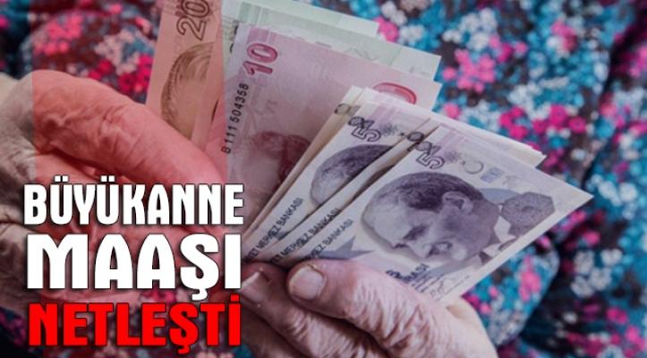 Büyükanneye verilecek torun maaşı 425 TL