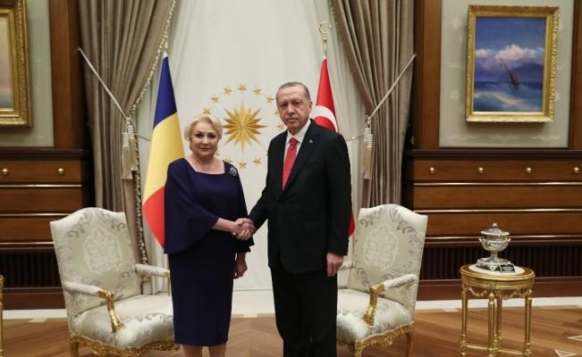 Cumhurbaşkanı Erdoğan, Dancila'yı Kabul Etti