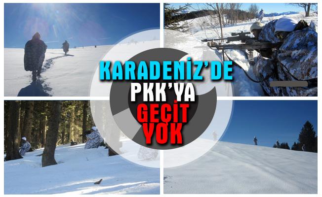 Giresun'da PKK operasyonu