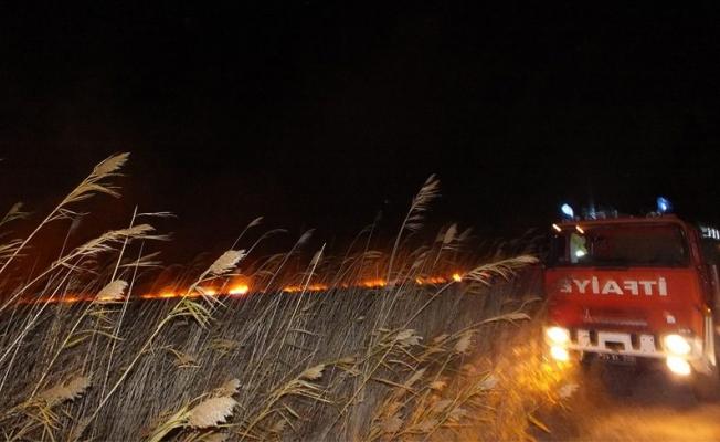 Mersin Göksu Deltası'nda yangın