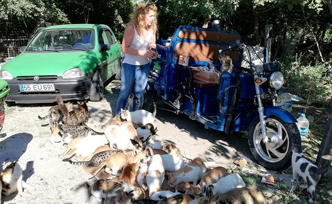 Hayvanların Nino`su70 Kedi 18 Köpek Besliyor!