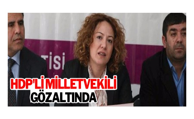 HDP`li Milletvekil gözaltında