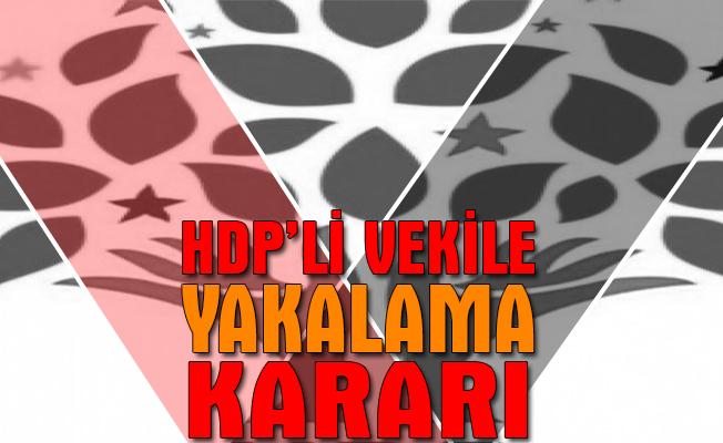 """HDP Milletvekili Öcalan hakkında """"yakalama"""" kararı çıkarıldı"""