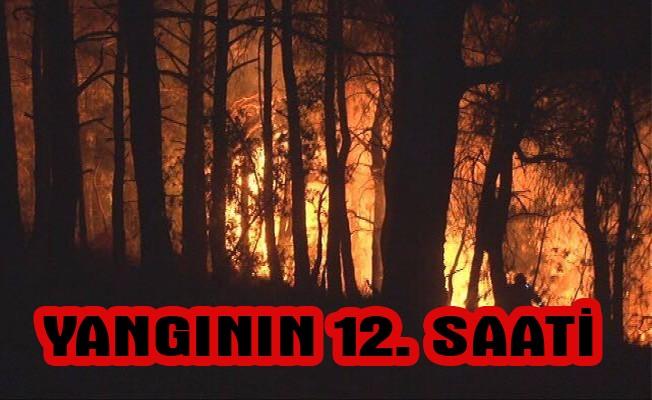 Yangın 12 saattir devam ediyor