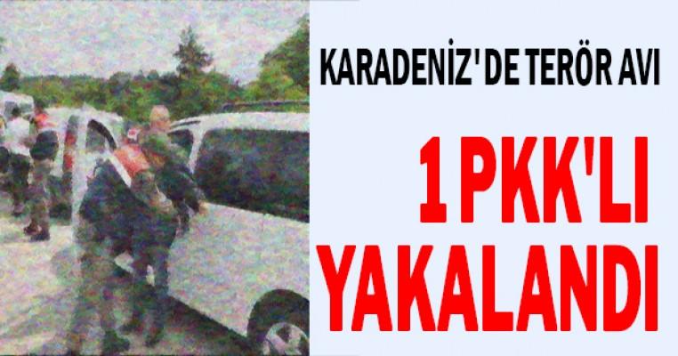 Karadeniz`de terör avı: 1 PKK`lı yakalandı