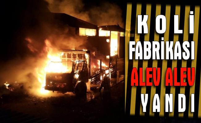 Koli fabrikası alev alev yandı