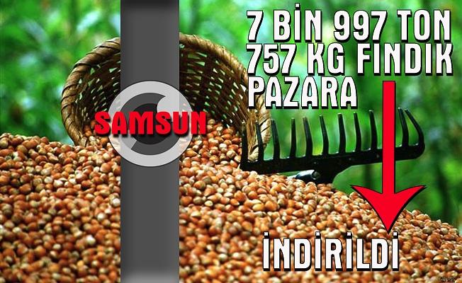 Samsun'a 7 bin 997 ton 757 kilogram fındık pazara indirildi