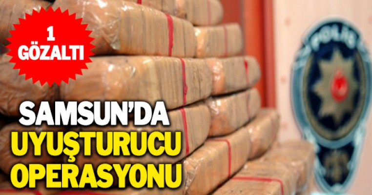 Samsun`da uyuşturucu operasyonuna 1 gözaltı