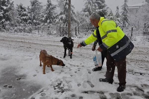 Terme'de karla mücadele sürüyor