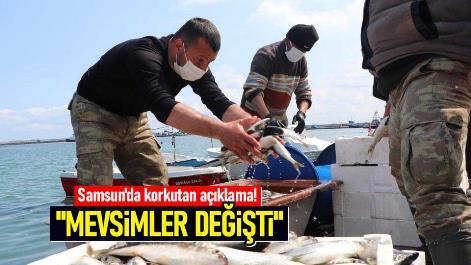 Samsun'da korkutan açıklama! 'Mevsimler değişti'