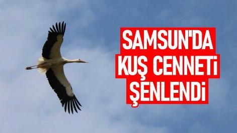 Samsun'da Kuş Cenneti şenlendi