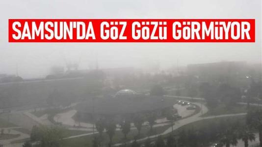 Samsun'da sis güzelliği