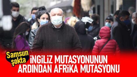 Samsun'da Afrika mutasyonu da tespit edildi!