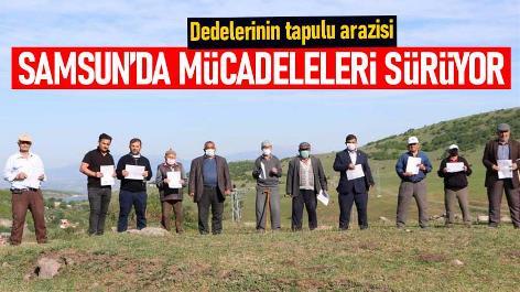 Samsun'da dedelerinden kalan tapulu arazileri için mücadele ediyorlar