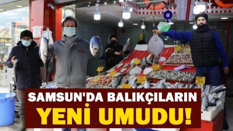 Samsun'da balıkçıların yeni umudu!