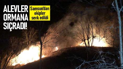 Alevler ormanlık alana sıçradı! Samsun'dan ekipler sevk edildi